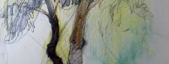 «L'arbre de vie» du 3 novembre au 29 décembre 2012